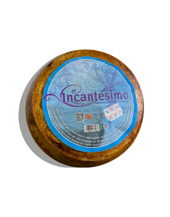 copy of Aged Goat Cheese of Pastore Abruzzese